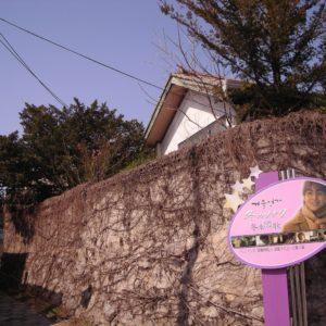 「冬のソナタ」のロケ地「チュンサンの家」が撤去されると聞いて急いで見に行ってみた